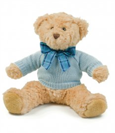 Mumbles Teddy Jumper