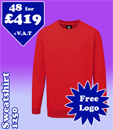 48 - 1250 Sweatshirts XS-5XL with YOUR LOGO- £419