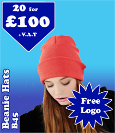 20 - B45 Beechfield Beanie Hats with YOUR LOGO £100 + VAT