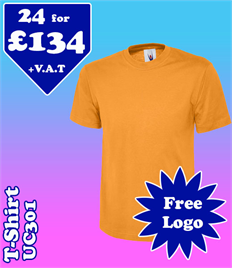 24 - UC301 T-Shirt XS-2XL with YOUR LOGO £134